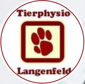 LogoLangenfeldPhysio